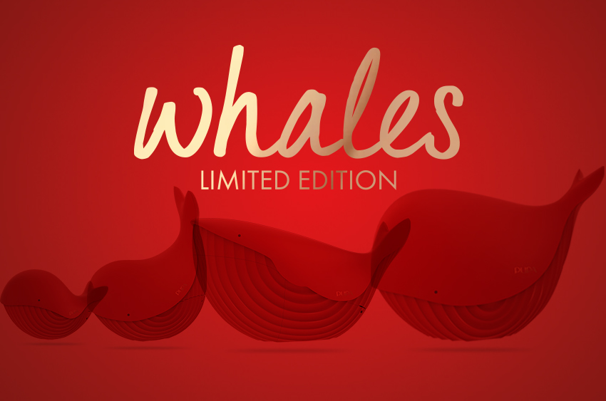 Whales - cofanetti Pupa